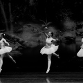 Danz Royal  2013-03-24--15 44 03